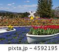 はままつフラワーパーク 浜松市フラワーパーク フラワーパークの写真 4592195