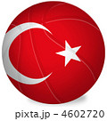 バスケットボール-トルコ 4602720
