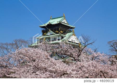 春爛漫の大阪城 4609019