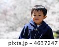 桜と子供 4637247