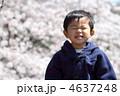 桜と子供 4637248