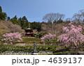 勝尾寺  4639137