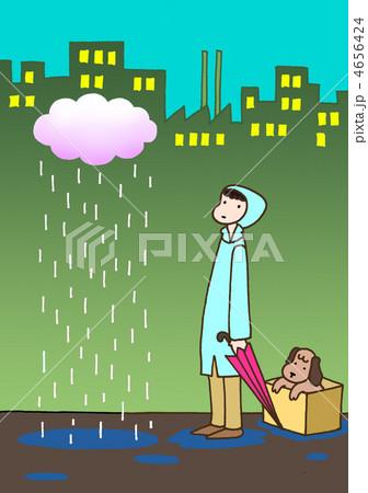 雨降り 4656424