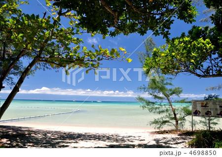 石垣島、底地ビーチ木陰からの風景 4698850