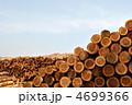 製材 材木 丸太の写真 4699366