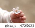 桜を握る手 4725023