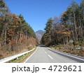 山へと続く道 4729621