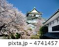 和歌山城 天守閣 城の写真 4741457