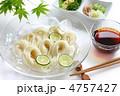 麺 麺類 素麺の写真 4757427