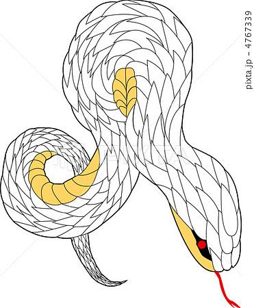 蛇 かっこいい イラスト , Illustration Images , (イラスト画像