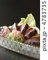 たたき 鰹 タタキの写真 4783735