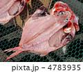 金目鯛の干物 4783935