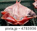 金目鯛の干物 4783936