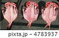 金目鯛の干物 4783937