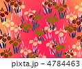 あやめ 花 菖蒲のイラスト 4784463