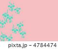 あやめ 花 菖蒲のイラスト 4784474