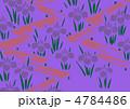 グラフィックパターン 4784486