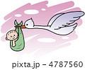 家族 赤ちゃん コウノトリ 4787560