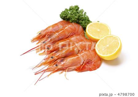 写真素材: argentine red shrimp, アカエビ