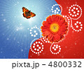 dahlia flower and Butterfly urticaria-face collage 4800332