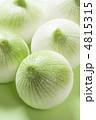 新玉葱 新タマネギ 新たまねぎの写真 4815315