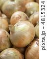 新タマネギ 新玉葱 新玉ねぎの写真 4815324