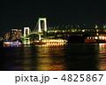 レインボーブリッジと夜景 4825867