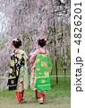 舞妓と満開の枝垂れ桜 4826201