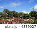 ローズガーデン バラ園 バラの写真 4839027