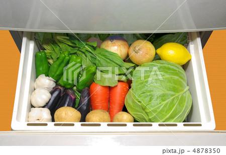 冷蔵庫の野菜室の野菜 4878350
