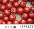ミニトマト プチトマト ぷちとまとの写真 4878523