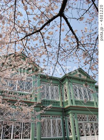 旧ハンター住宅と桜(王子動物園内の異人館) 4881220