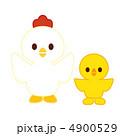 ベクター 鶏 鳥のイラスト 4900529