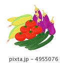 野菜 4955076