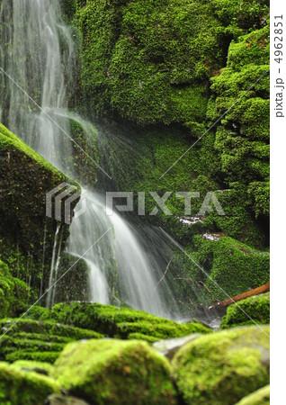蓼仙の滝 4962851