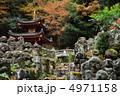 羅漢 愛宕念仏寺 羅漢さんの写真 4971158