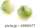 玉ねぎ 玉ネギ 生野菜の写真 4989477