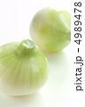 玉ねぎ 玉ネギ 生野菜の写真 4989478