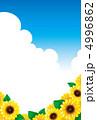 ひまわりと夏空 4996862