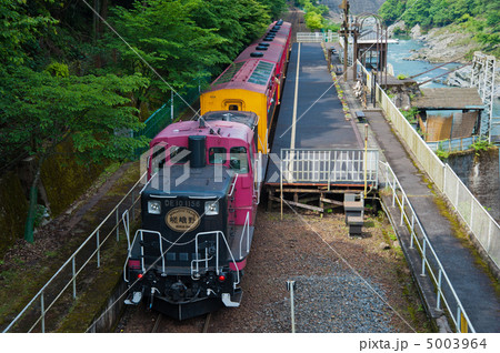 トロッコ列車 5003964