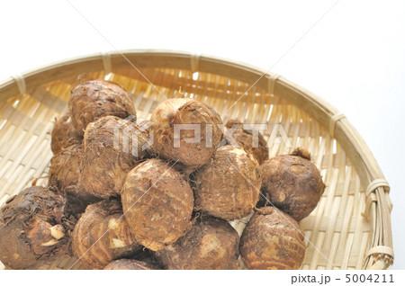 里芋の写真素材 [5004211] - PIXTA