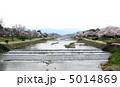 賀茂川 川 桜の写真 5014869