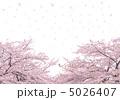 桜吹雪白背景-33147 5026407