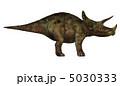 トリケラトプス 5030333