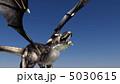 辰 龍 竜のイラスト 5030615
