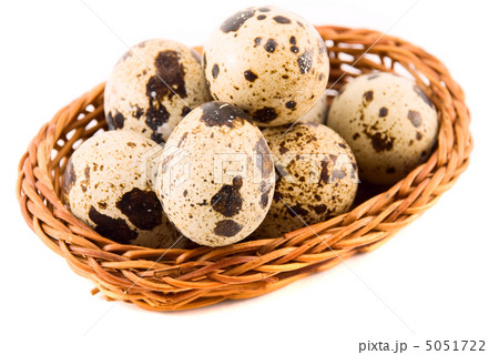quail eggs in a basket isolated on whiteの写真素材 [5051722] - PIXTA