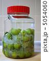 アルコール 梅酒 氷砂糖の写真 5054060