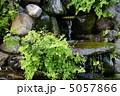 湧き水 5057866