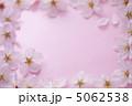 さくら 花 桜の写真 5062538