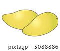 ペリカンマンゴー 5088886